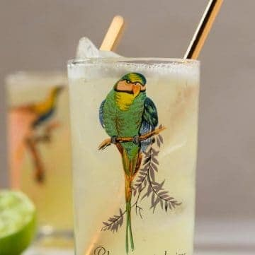 Close up view of a tumbler with the image of a bird on it, filled with a light yellow beverage.