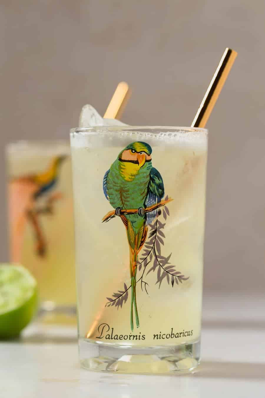 Close up view of a tumbler with the image of a bird on it, filled with a light yellow Pineapple Gin Cooler Cocktail.